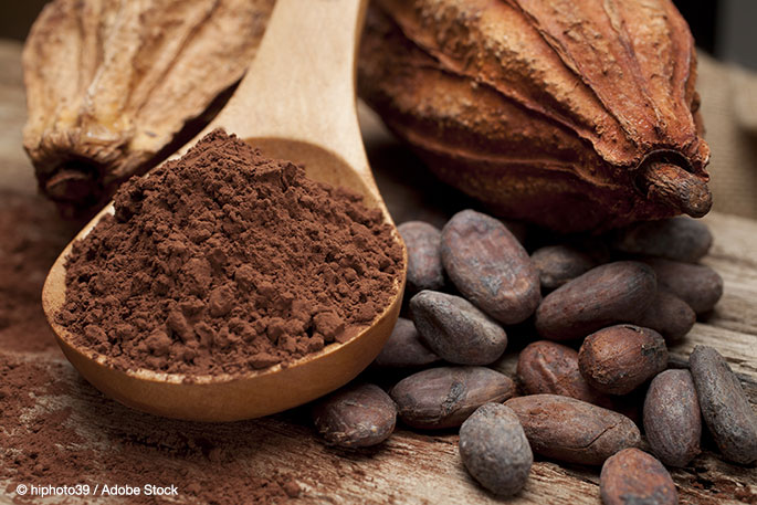 The Magical Cacao: Models for Corporate Sustainability