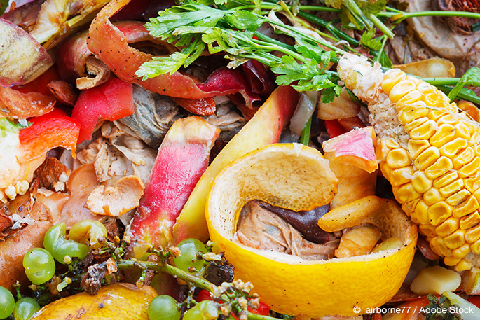 Food Waste: An Economic and Environmental Problem