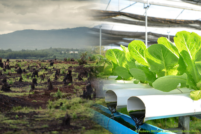 Technologies of the Future vs. Unsustainable Farming