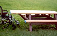 Standard ADA Compliant Single Access Picnic Table