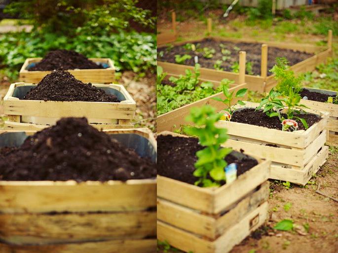 Wood Pallet garden bed
