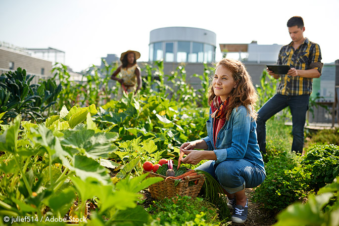 Are Rooftop Gardens The Next Big Thing In Corporate Social Responsibility?
