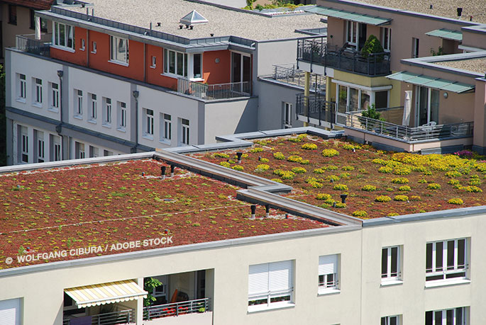 Corporate Social Responsibility: Examining The Energy Efficiency of Flat Roofs