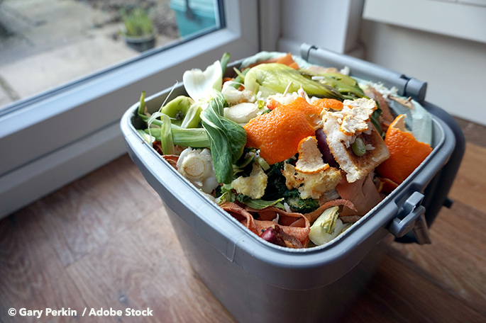 Food Waste In The USA: How You Can Have An Impact