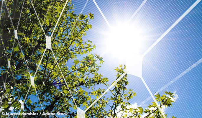 The Solar Tree Produces Green Energy With Zero Wasted Space