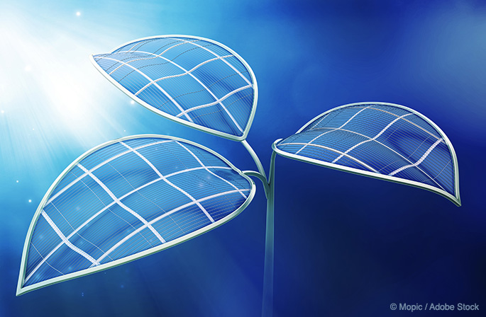 Zero Waste Energy: Will Artificial Photosynthesis Make Power From Thin Air?