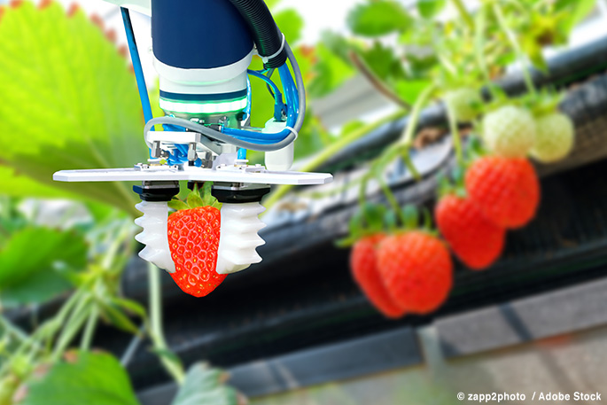 Will Robots in Our Greenhouses Cut Down on Food Waste?