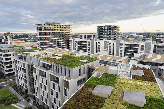 Improving Sustainability At The Workplace With Green Roofing