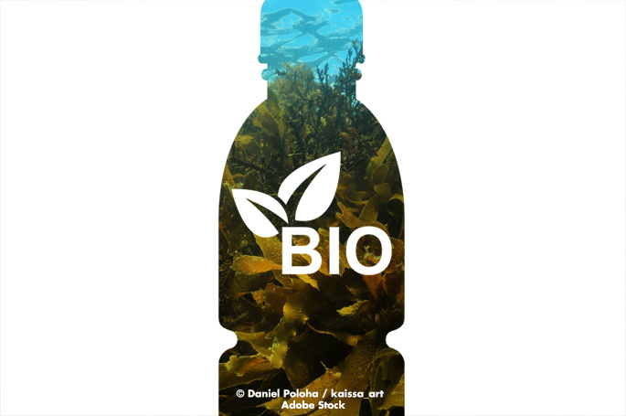Making Bioplastic With Seaweed