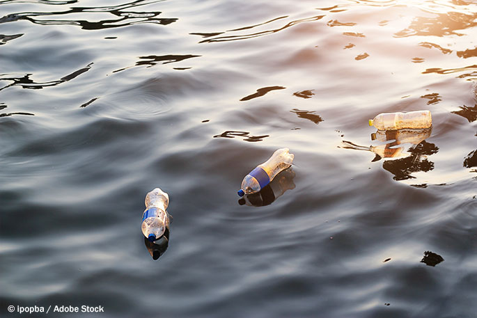 Plastic Pollution and the WasteShark