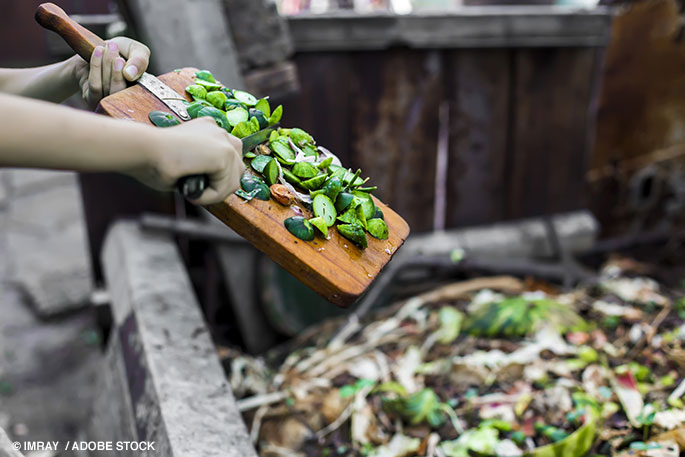 The Impacts of Food Waste & How To Reduce It