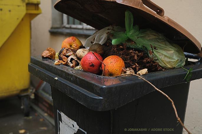 How To Help Your City Reduce Food Waste