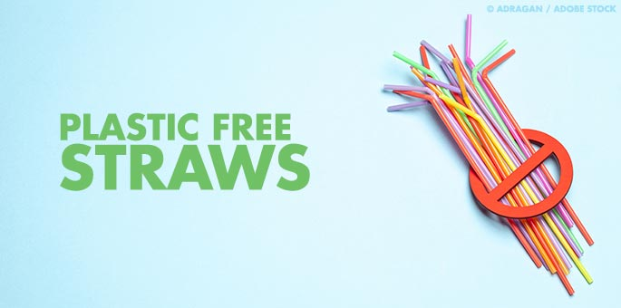 Will Seaweed Straws Help Us Reduce Plastic Use?